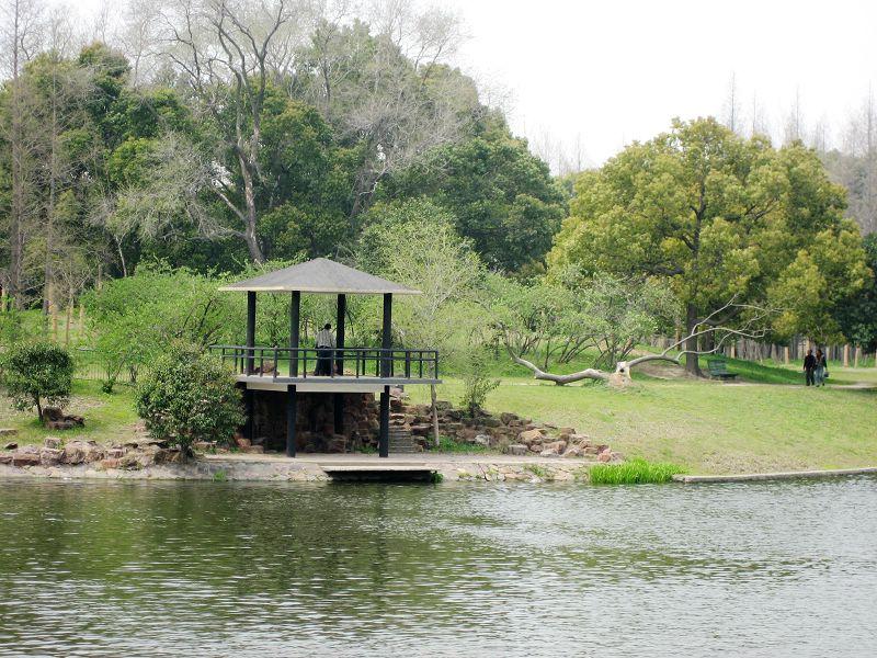 共青森林公园花展 旅游天地 篱笆网 - 年轻家庭 生活