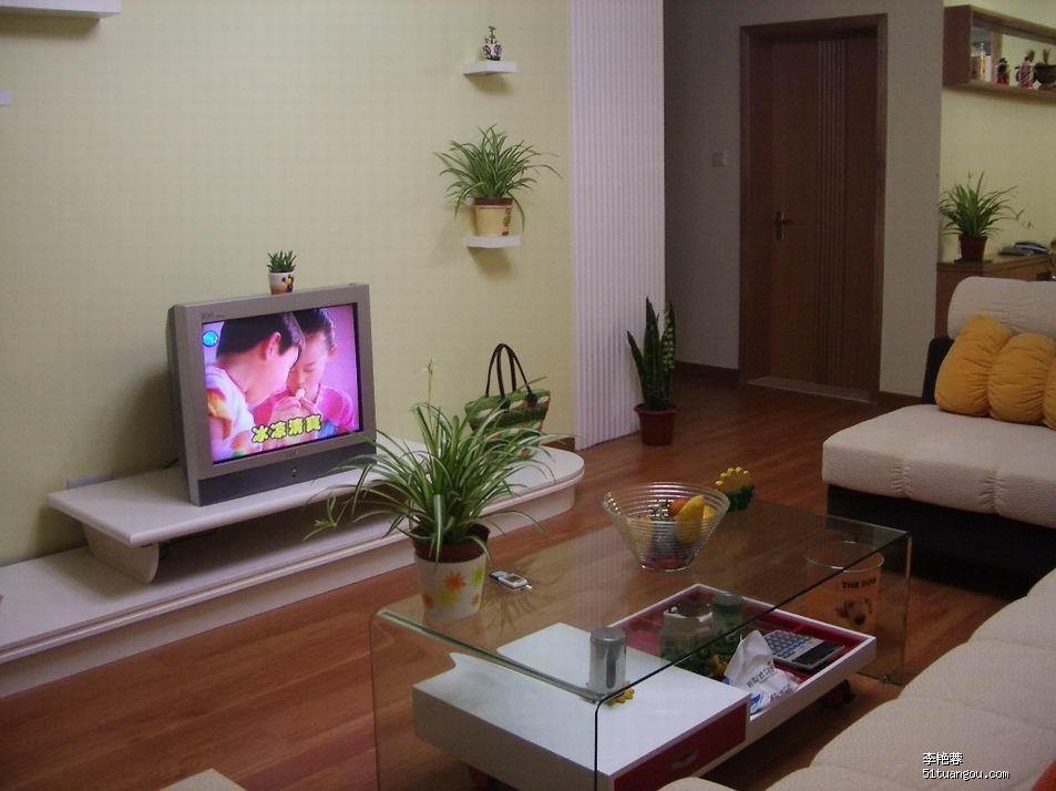 自行设计的电视机柜