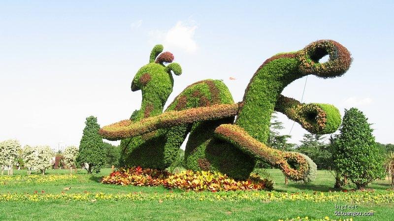 看树拗造型——世纪公园立体花展