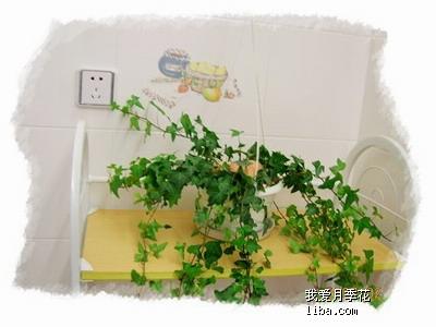 首次做曲奇~火热出炉~ 儿童房客厅p10 p6 p29图片