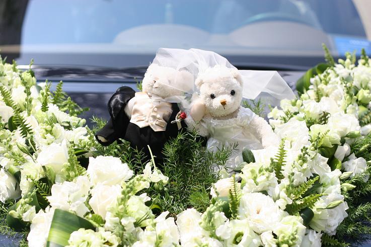 2个可爱的小熊