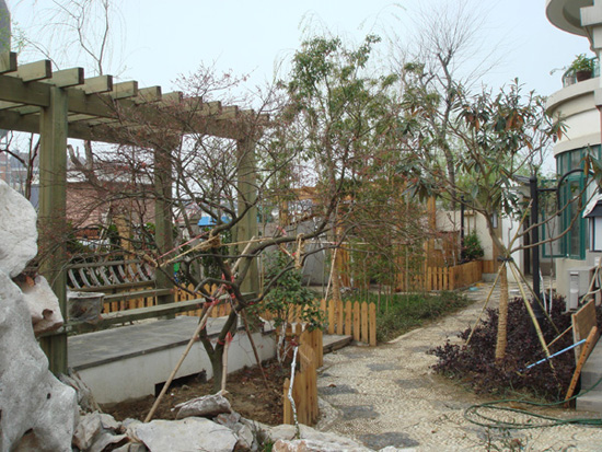 了,还开辟楼顶花园这个新战常 装修日记 年轻家庭 生活社区