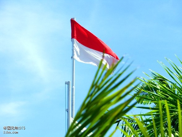离开巴厘岛时拍的印度尼西亚的国旗!