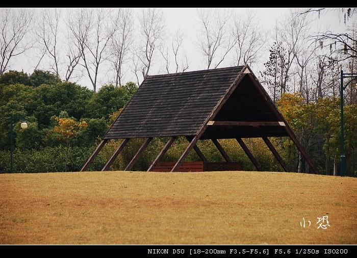 日踏青之外高桥滨江森林公园