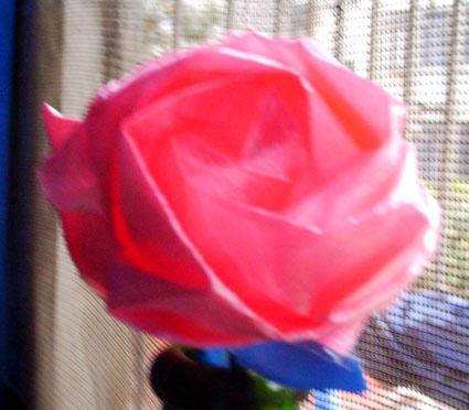 用纸折玫瑰花_用纸折玫瑰花步咒