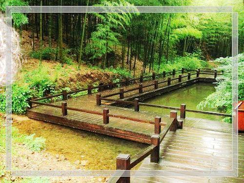 6月常州恐龙园的孔雀 溧阳南山竹海的小溪 南京夫子庙的肯德鸡