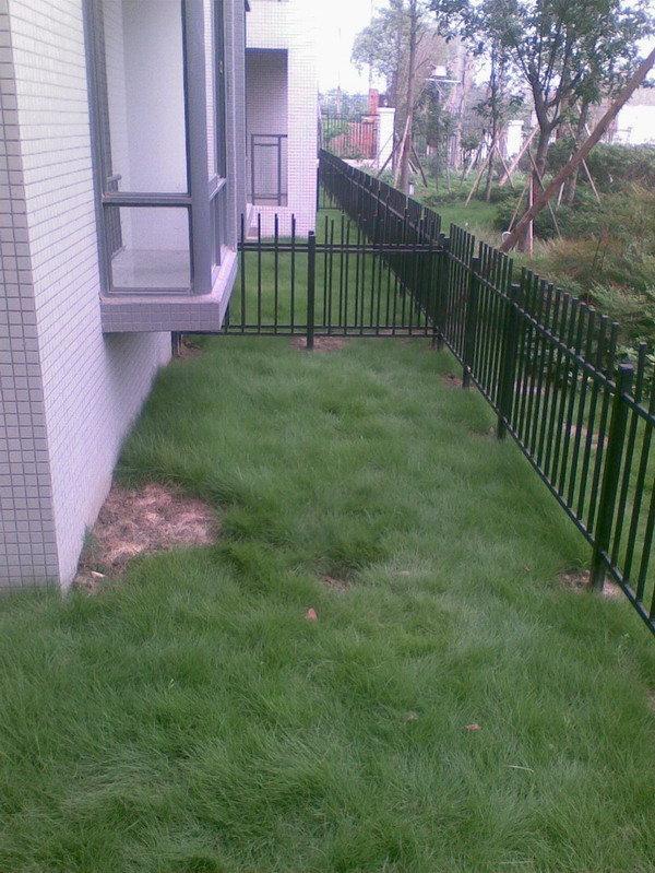带小院子的花园洋房,大家进来提点意见