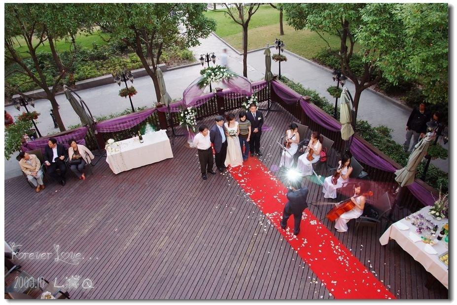 洋房 酒会 提琴四重奏 浪漫紫色,2009 10 17 恒悦轩 简约婚礼