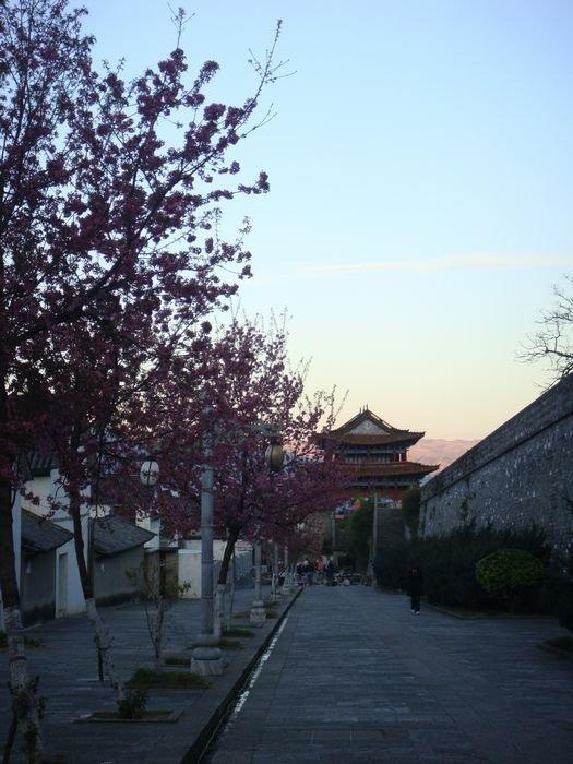 10年1月2日云南瑞丽腾冲大理昆明8天7晚自由行,正好碰上大理4.9图片