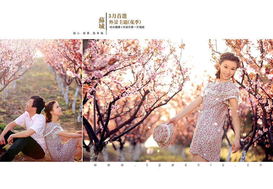 2011年4月韓式內景+月光馬頭+外景花海出自tp視覺尊榮婚紗攝影館圖片