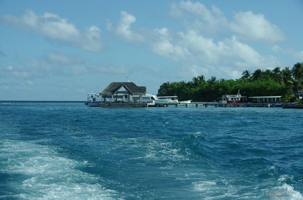 【星の蜜月】马尔代夫双岛游---cocopalm & kuramathi