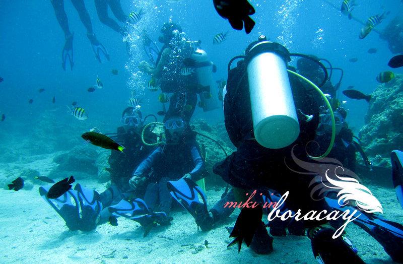 壁纸 海底 海底世界 海洋馆 水族馆 桌面 800_524