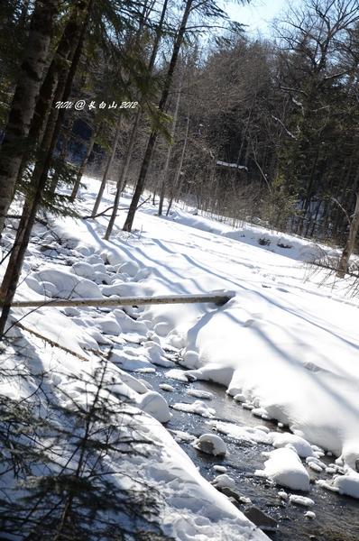 26-2.2冰天雪地东北游---延吉,长白山,二道白河,奶头河,雪乡,哈尔滨.
