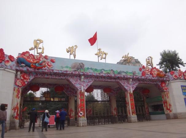 昆明动物园1