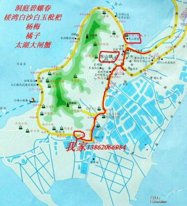 五月东山槎湾白玉枇杷,价格优惠,苏州市区可送货.