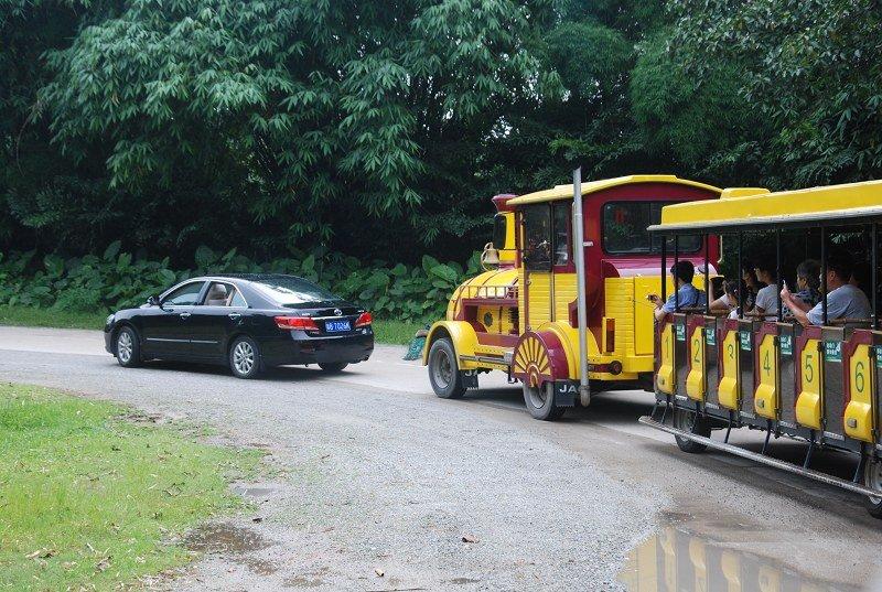 野生动物园的精华部分当然是去野生区坐小火车啦!