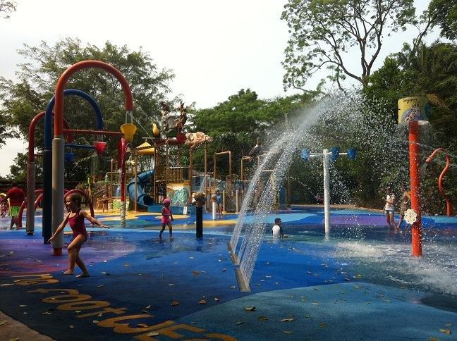 独自带5岁儿子新加坡亲子游:227--35号,动物园和夜间动物园