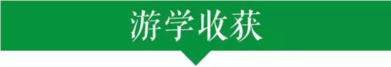 杭州游学夏令营 旅游福利社
